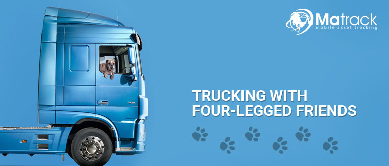 Trucking With Four-legged Friends